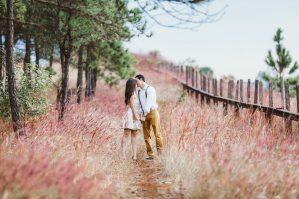 Poroka na deželi. Kmečka poroka